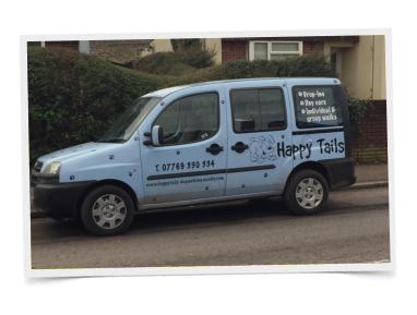 Happy Tails Dog Walking Taunton